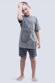 Пижама для мальчиков Live Untamed серая