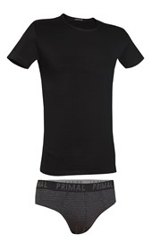 Мужской комплект Primal 160SN футболка и слипы
