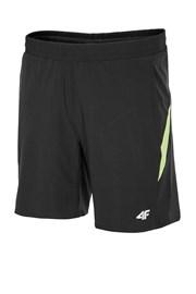 Мужские спортивные шорты 4f Blacky